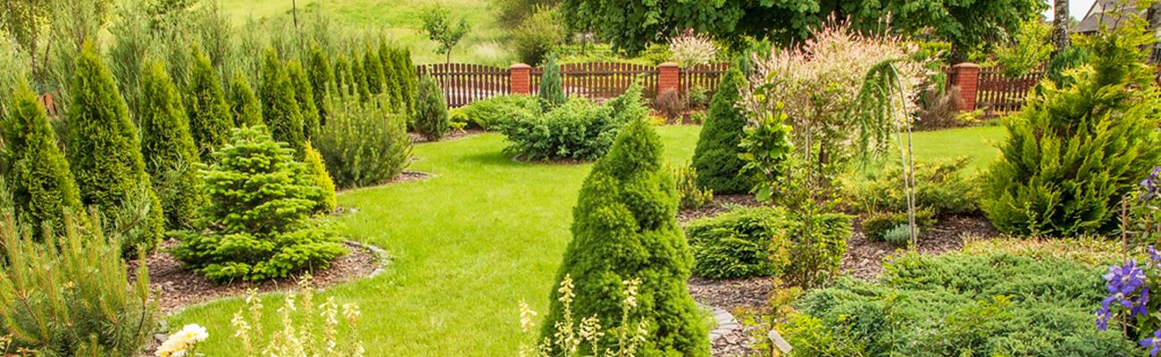 7 teendő a kertben, melyeket ősszel elvégezve megkönnyítjük  a tavaszi munkánkkat!